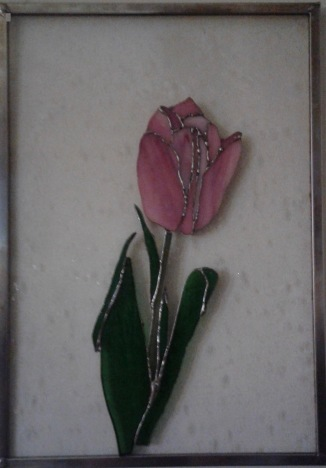 tulip-cropped